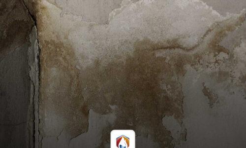 Tratamiento y prevención de los problemas de humedad en viviendas y comercios