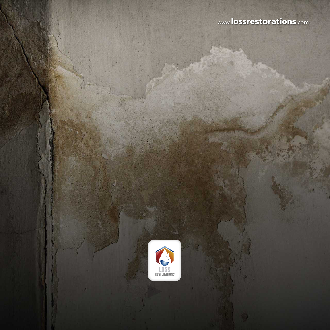 Treatment and prevention of moisture problems in homes and businesses