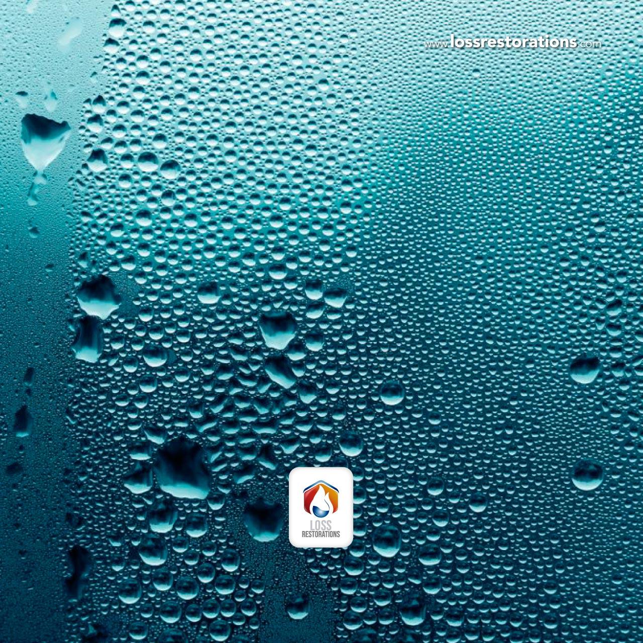 Qué es la humedad y cómo combatirla en suelos y paredes