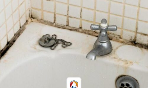 Repair walls and floors in bathrooms due to humidity