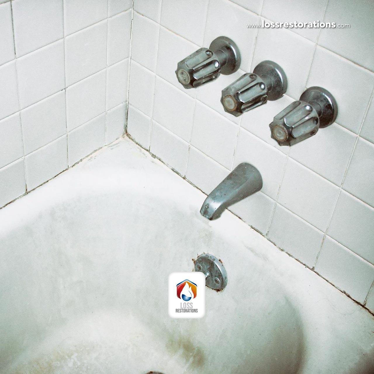 Tratamientos para combatir el Moho en las paredes y los pisos de baños