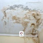 Cómo evitar las filtraciones en los tejados