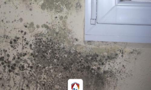 Elimina ya las filtraciones en las paredes